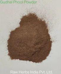 Gudhal Phool Powder
