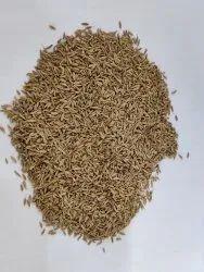 Aadinath Brown Black Cumin Seed Jeera, 30 kg, Packaging Type: P.P. Bag