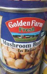 Oyster Mushroom Dry
