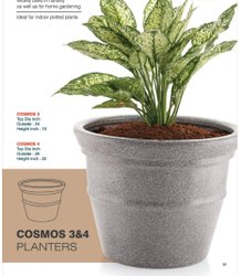 Cosmos Planters Pot
