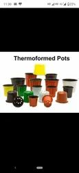 Thermoformed Nursery Pot