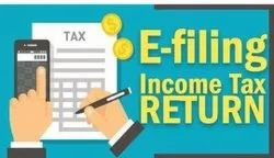 Professional Income Tax Filing Services, in Pan India, Individual
