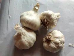 A Grade Fresh Whole Garlic