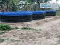 Biofloc Farming