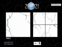 Multicolor Gloss 2x2 Ceramic PGVT Tiles, Thickness: 5-10 mm, Size: 60 * 60 (cm)