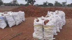Natural Coconut Shells