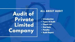 Chartered Accountant Company Audit