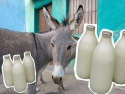 Donkey's Milk, Bottle