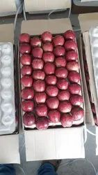 Himachali A Grade Export Quality Apple, Packaging Size: 28kg, Packaging Type: Carton