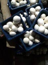 Pan India White Mushrooms, Packaging Type: Box