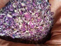 Red Envigold Gulab Patti / rose petals / Rosa Centifolia