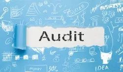 Auditing Consulting Services