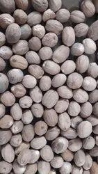 Dried Jaifal Nutmeg