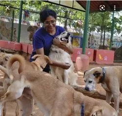 in Pune Animal Care Service, 5000