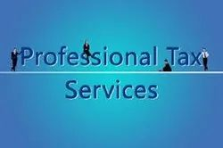 Professional Tax Employer Return