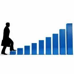 Sales Consultancy Service