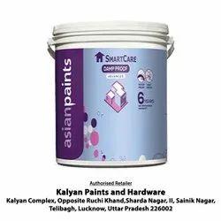 Asian Paints Smartcare Damp Proof