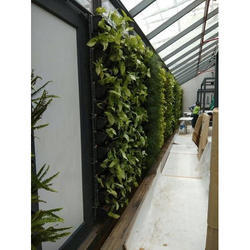 Vertical Landscaping Services
