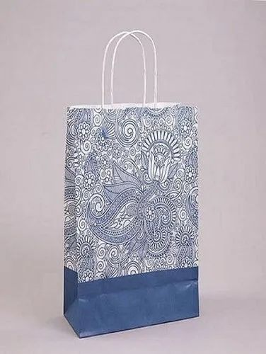 Shopping Paper Carry Bag, Capacity: 2 - 5 Kg