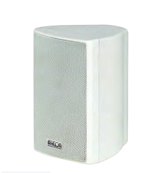 PS-300T 2-Way Compact PA Wall Speakers