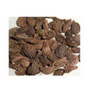 Dried Black Cardamom