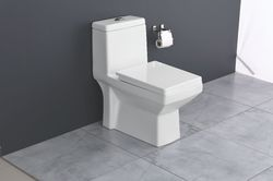 White Floor Mounted Crystal One Piece Toilet, For Bathroom Fitting, Size/Dimensions: 710X375X740mm