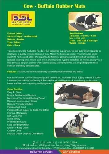 Hf Cow Supplier In Telangana - All About Cow Photos