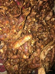 Fiber Tamarind With Seeded, Packaging Size: 50 Kg