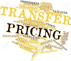 Transfer Pricing Audit Services
