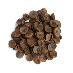 Dry Betel Nut