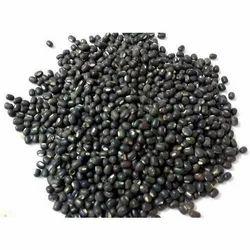 Organic Black Gram Seed