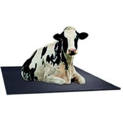 Cow Mat - Rubber Cow Mat Latest Price, Manufacturers & Suppliers