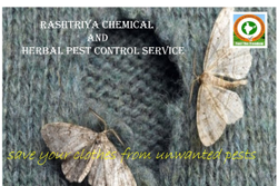 Carpet Pest Control Service
