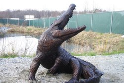 Brown Black Crocodile Fiber Fountain