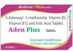 S-Adenosyl L-Methionine Vitamin B12 And Folic Acid