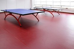 Table Tennis Mat Flooring