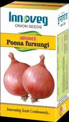 Onion Seed Advance Poona Fursungi