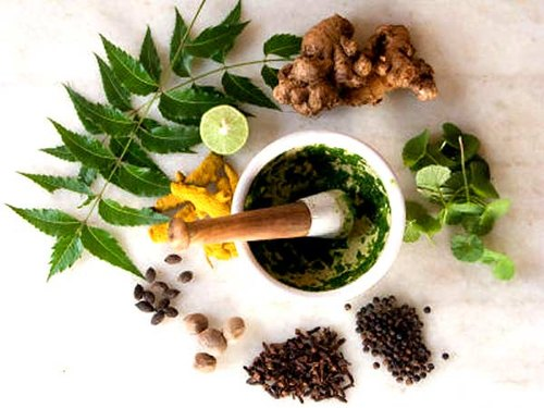 Ayurvedic products helped to improve the immunity of people during the Corona pandemic