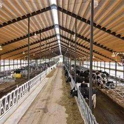 Prefabricated Dairy Farm Sheds