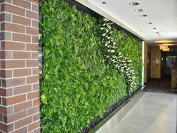 Artificial Vertical Wall Garden