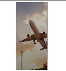 Air Freight Management Services
