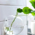 Wall Glass Terrarium