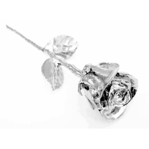 Silver Plated Real Rose 925 Dipped