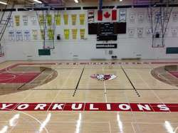 Sports Flooring Services