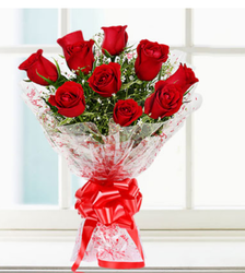 Charming Red Flowers