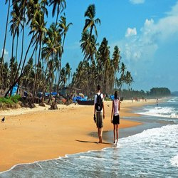 Goa Golden Beaches Tour Package