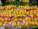 Manufacturer and Exporter of Organic Fresh Mangoes