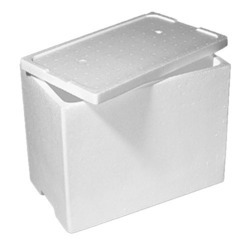 Ice Thermocol Box