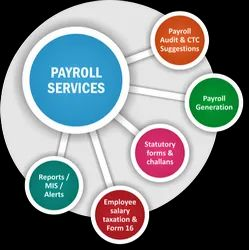 Individual Consultant Private Limited Statutory Outsourcing Services