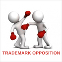Trademark Objection Reply Services